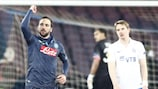 Gonzalo Higuaín struck a hat-trick as Napoli beat Dinamo