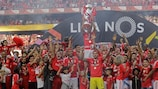 Benfica put the seal on their 35th Portuguese title on Sunday